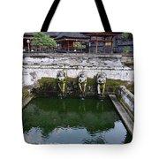 Temple Fountain Tote Bag
