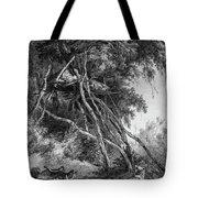Temporary Tree Dwelling Tote Bag