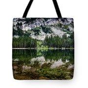 Tenaya Lake Tote Bag