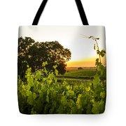 Tendrils Kissing Sun Tote Bag
