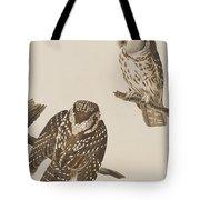 Tengmalm's Owl Tote Bag