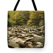 Tennessee Autumn Stream 6059 Tote Bag