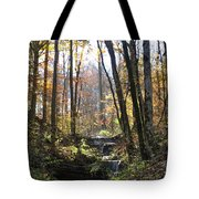 Tennessee Falls Tote Bag