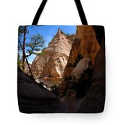 Tent Rocks Canyon Tote Bag