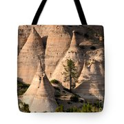 Tent Rocks Wilderness Tote Bag