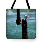 Tern Gulfstream Florida Tote Bag