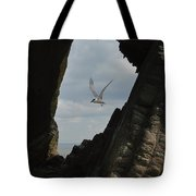 Tern Through The Gap Tote Bag