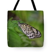 Terrific Capture Of A Paper Kite Butterfly On A Leaf Tote Bag
