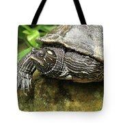 Tess The Map Turtle #2 Tote Bag