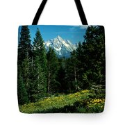 Teton Meadow Tote Bag