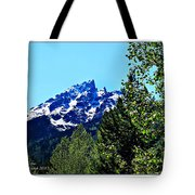 Teton Picture Perfect Tote Bag