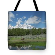 Teton Reflection With Buffalo Tote Bag