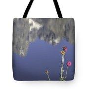 Teton Reflections Tote Bag