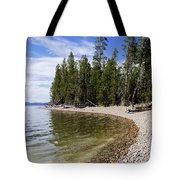 Teton Shore Tote Bag