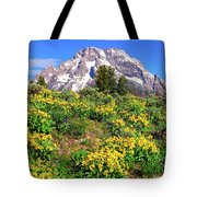 Teton Spring In The Valley Tote Bag