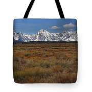 Teton Willow Flats Panorama Tote Bag