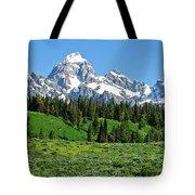 Tetons In Spring Tote Bag