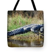 Texas Alligator Tote Bag