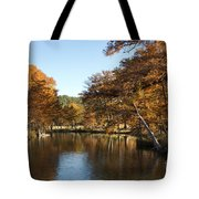 Texas Autumn Tote Bag
