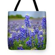 Texas Blue - Texas Bluebonnet Wildflowers Landscape Flowers  Tote Bag