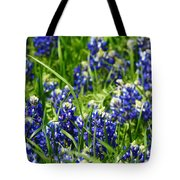 Texas Bluebonnets 002 Tote Bag