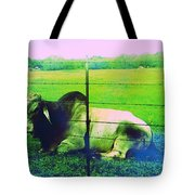 Texas Cattle Verde Tote Bag