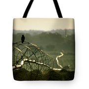 Texas Hawk Tote Bag