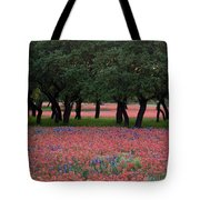 Texas Live Oaks Surrounded By A Field Of Indian Paintbrush And Bluebonnets Tote Bag