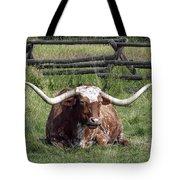 Texas Longhorn Bull At Rest Tote Bag