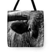 Texas Longhorn Bulls Eye Tote Bag