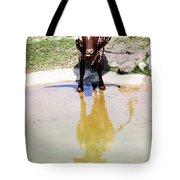 Texas Longhorn Tote Bag