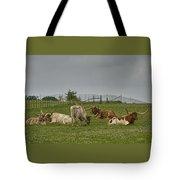 Texas Longhorns And Wildflowers Tote Bag
