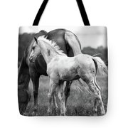 Texas Ranch  Tote Bag