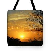 Texas Sun Tote Bag