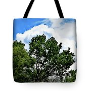 Texas View 112 Tote Bag