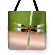 Texas Widow Skimmer - 10 Digitalart Tote Bag