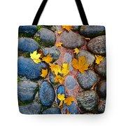 Texture. Autumn. Tote Bag