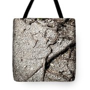 Texture With Root With Plenty Of Pebbles Tote Bag