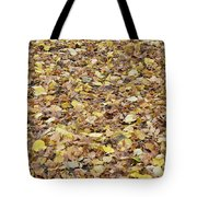 Texture104 Tote Bag