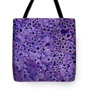 Texture3 Tote Bag