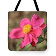 Textured Pink Peony Tote Bag