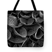Textures And Tones Tote Bag