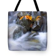 Textures Of Autumn Tote Bag