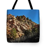 Textures Of Light Tote Bag