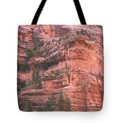 Textures Of Zion Tote Bag
