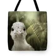 Th White Peacock Tote Bag