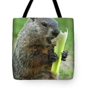 Thanks You For Growing A Garden Tote Bag