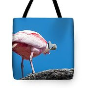 That Disapproving Look Tote Bag