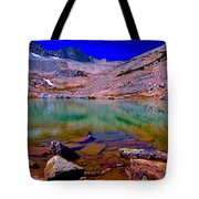 That Is The Glacier Up There Tote Bag
