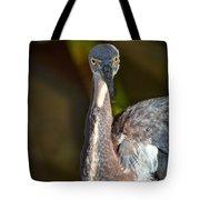 That Look  Tote Bag